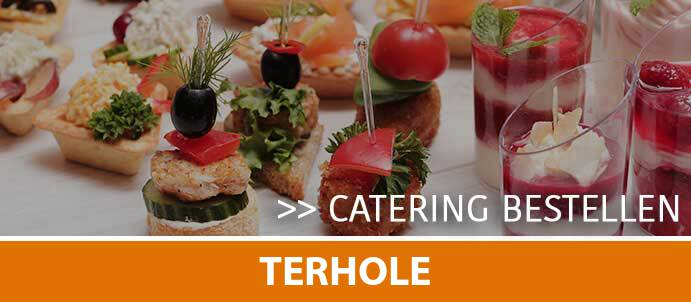 catering-cateraar-terhole